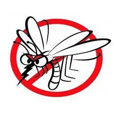 Ochrana pred hmyzom a kliešťami