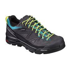 Turistická obuv Salomon X Alp LTR GTX W