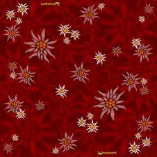 Benesport multifunkčná šatka - Plesnivec červená