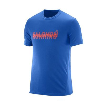 Salomon Park Tech SS Tee M - blue yonder