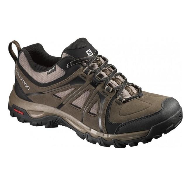Turistická obuv Salomon Evasion GTX - brown-x/bur/shre